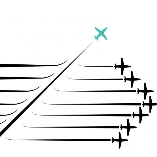 Fly-hvid-baggrund[1]